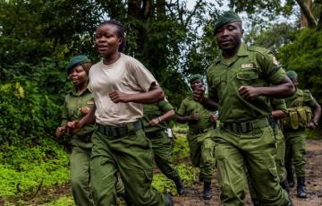 Nord-Kivu : 6 écogardes du parc des Virunga tués dans une attaque armée